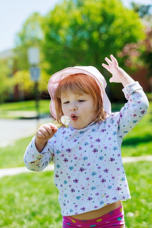 A menina bonito obtém o dente-de-leão e o sorriso, família feliz que tem o jogo exterior, natureza do divertimento do verão fotografia de stock