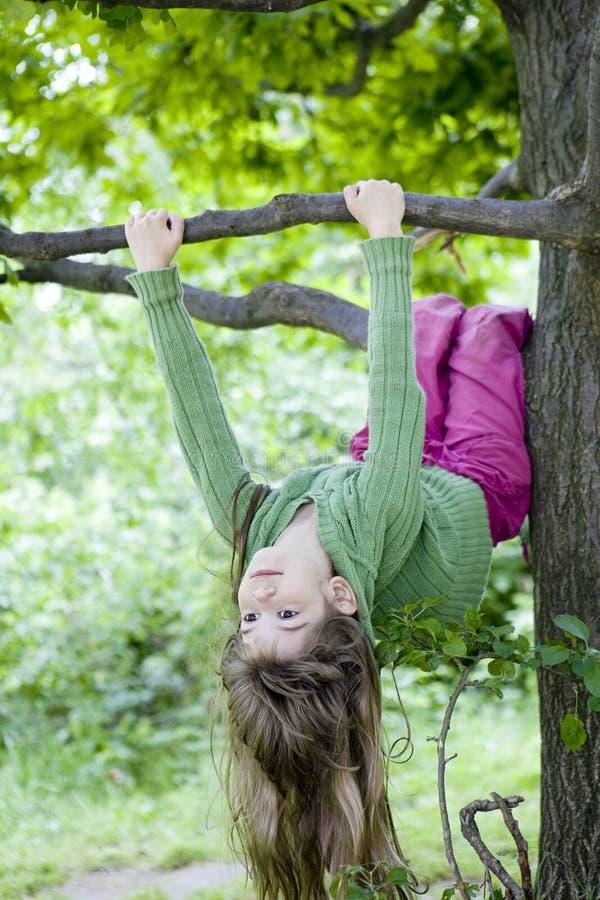 Menina bonito pequena que pendura da filial da árvore. fotos de stock royalty free