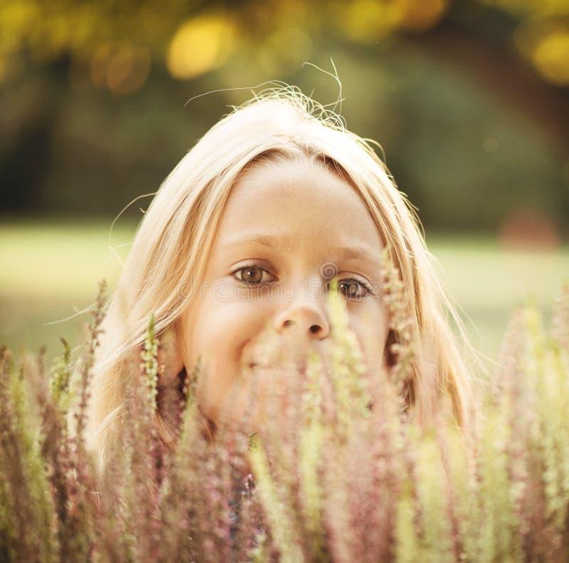 Menina bonito que esconde atrás das flores da urze foto de stock royalty free