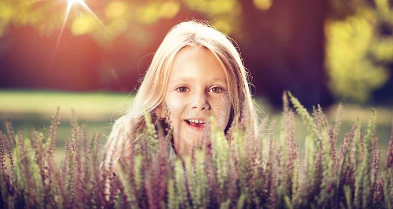 Menina bonito que esconde atrás das flores da urze fotografia de stock