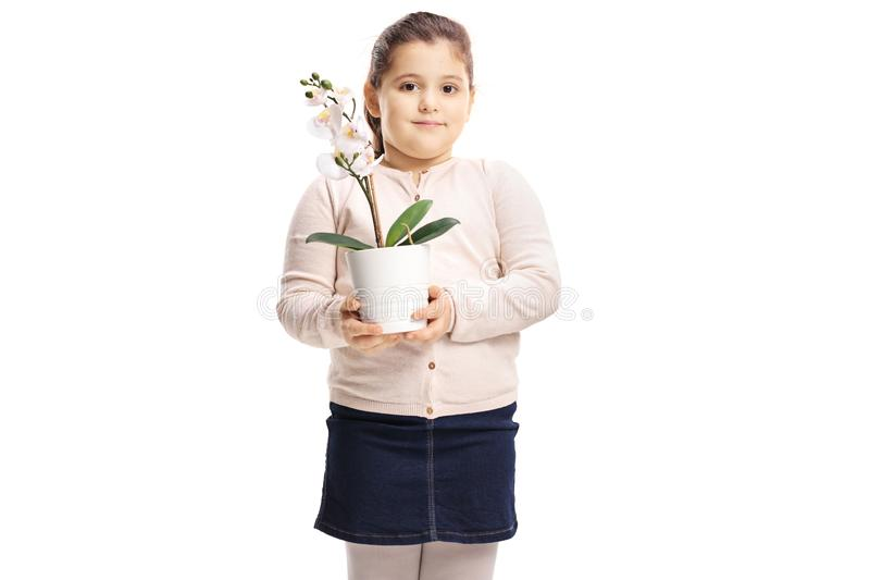Menina bonito que guarda uma flor da orquídea fotos de stock
