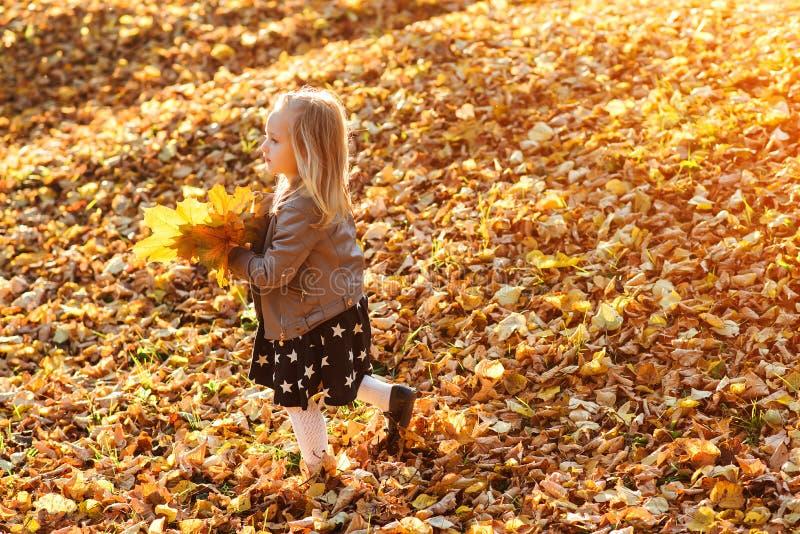 Menina bonito que joga com as folhas douradas caídas Criança feliz que anda no parque do outono Tempo dourado bonito do outono Ch imagens de stock royalty free