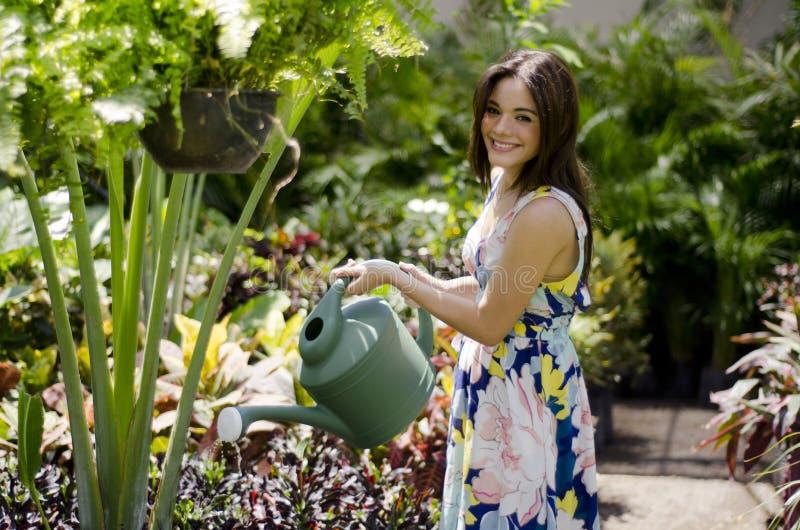Menina bonito que molha as plantas fotos de stock royalty free