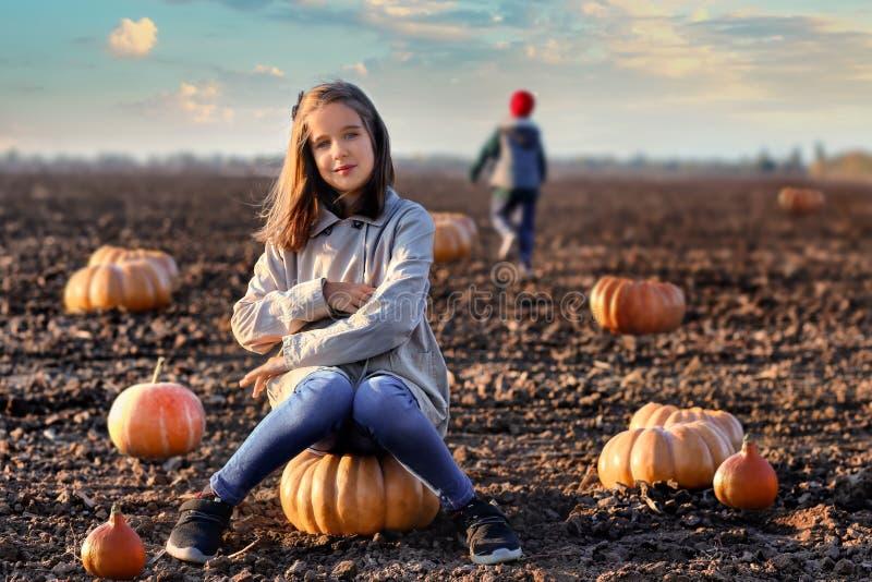 Menina bonito que senta-se na abóbora no campo do outono imagem de stock