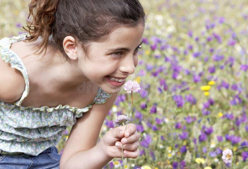 Menina bonito que senta-se no campo das flores fotos de stock
