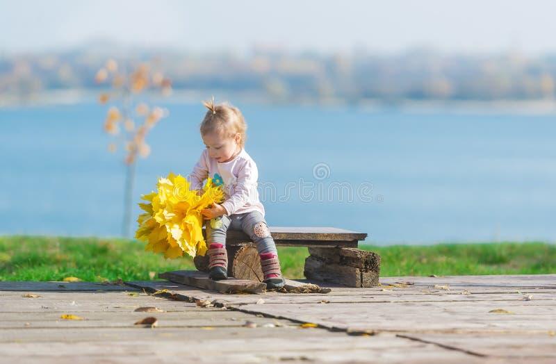 A menina bonito senta-se em um banco de madeira com o ramalhete das folhas de bordo na perspectiva de um rio do outono no parque imagem de stock