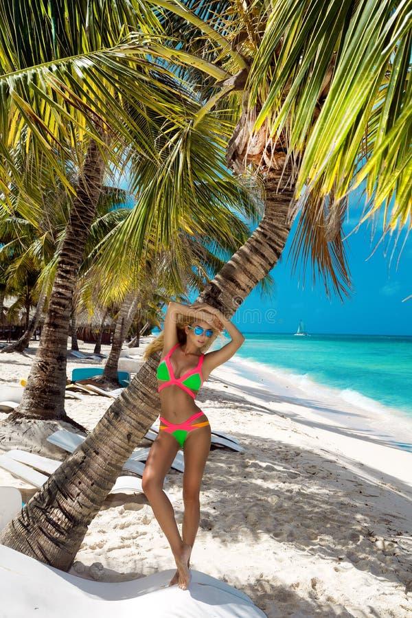 Menina bronzeada bonita em suportes elegantes do biquini ao lado de uma palmeira na praia de uma ilha tropical F?rias de ver?o, c fotografia de stock royalty free