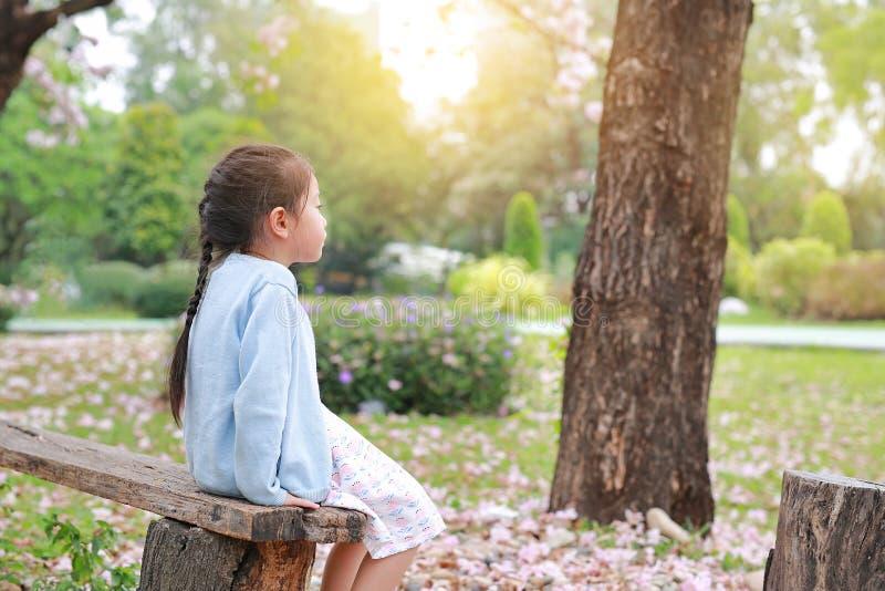 Menina calma que senta no início de uma sessão de madeira o jardim do verão com vista para fora imagem de stock royalty free