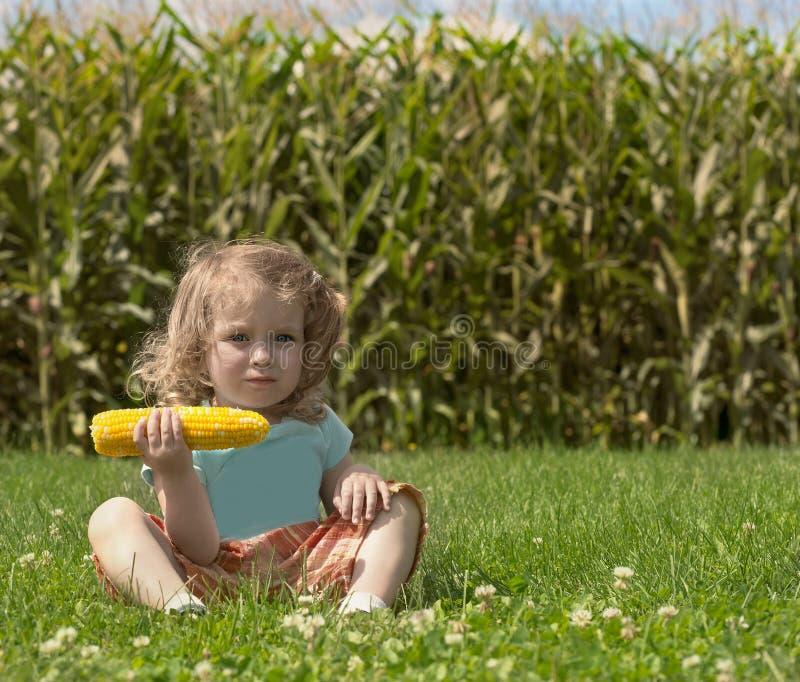 A menina caucasiano loura pequena adorável está no campo e em comer um milho As hastes do núcleo foto de stock royalty free