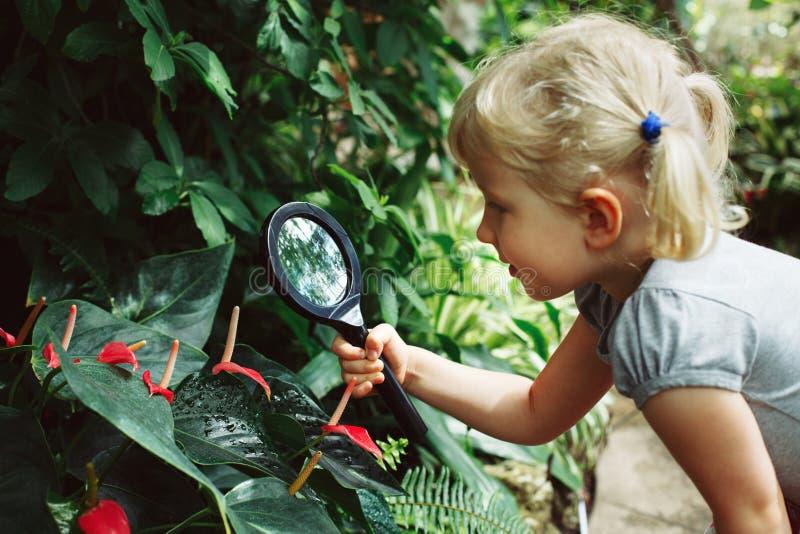 A menina caucasiano que olha plantas floresce o antúrio através da lupa imagens de stock