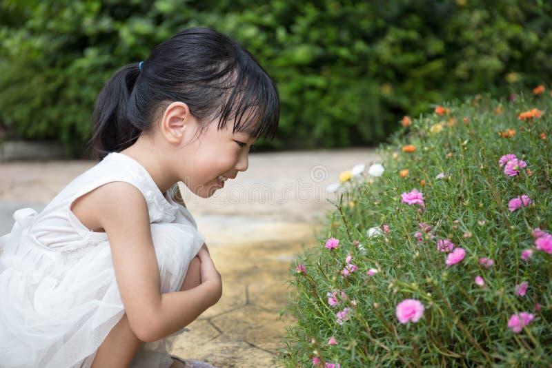Menina chinesa asiática que joga no jardim exterior imagens de stock royalty free