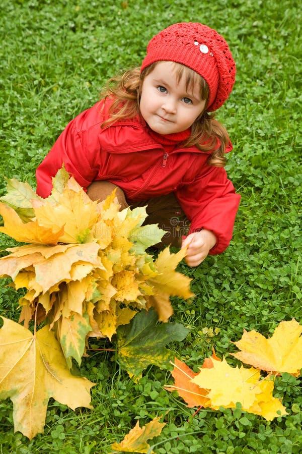 A menina coleta as folhas de bordo no parque do outono imagem de stock royalty free