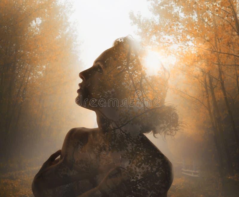 Menina com árvore para dentro Conceito do outono Exposição dobro fotos de stock