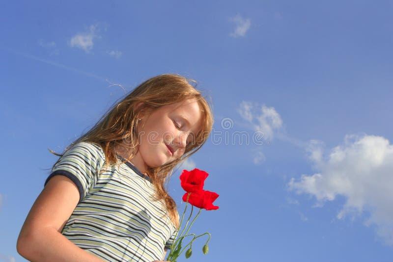 Menina com as papoilas sobre o céu fotos de stock