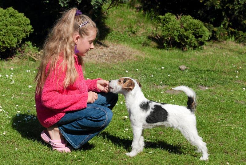 Menina com cão de animal de estimação fotografia de stock