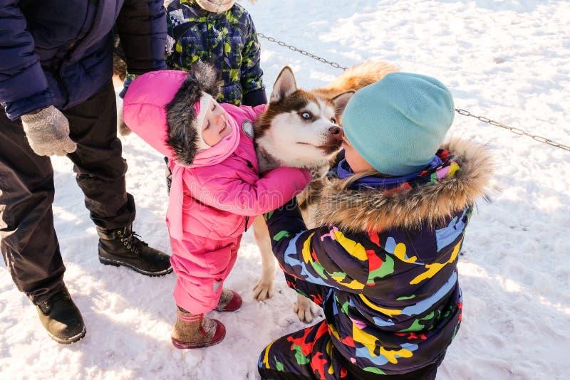 Menina com cão de puxar trenós Bebê bonito com cão imagem de stock
