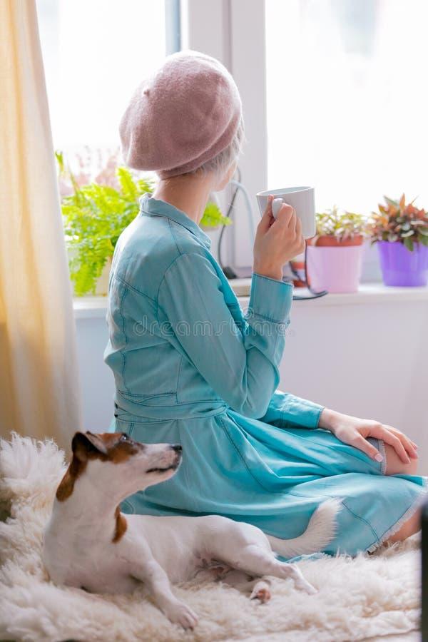 Menina com cão em casa imagem de stock