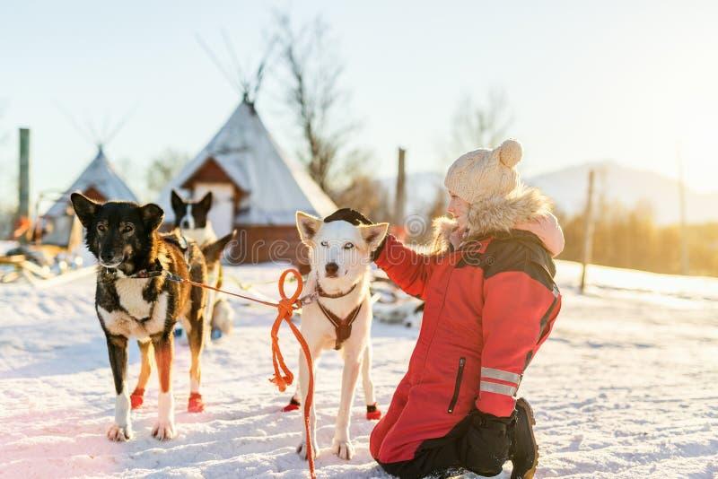 Menina com cão ronco imagem de stock royalty free