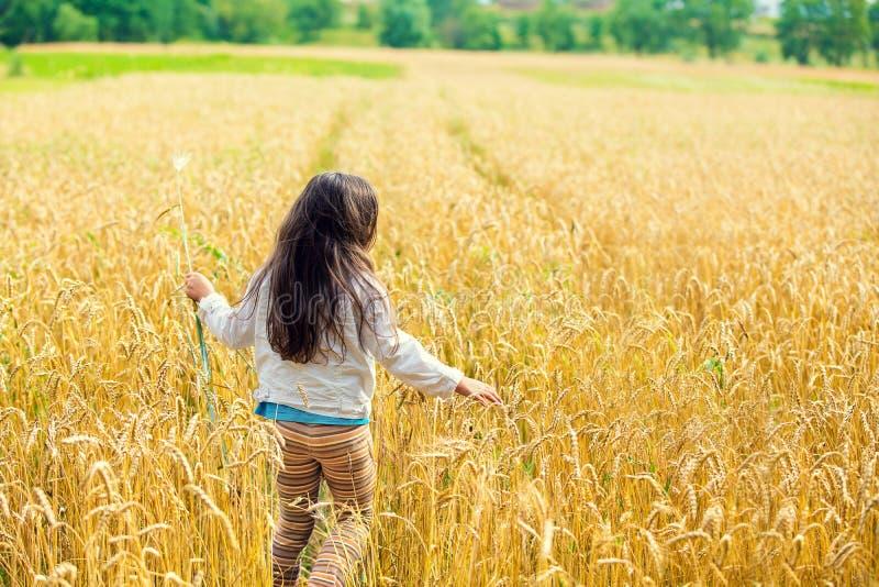 Menina com cabelo longo no campo de trigo fotografia de stock royalty free