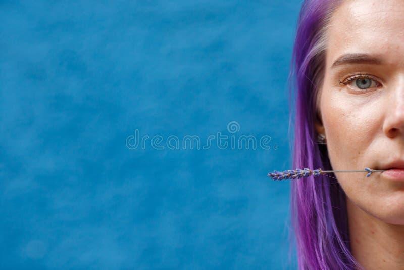 A menina com cabelo roxo guarda a flor da alfazema dos bordos imagem de stock royalty free