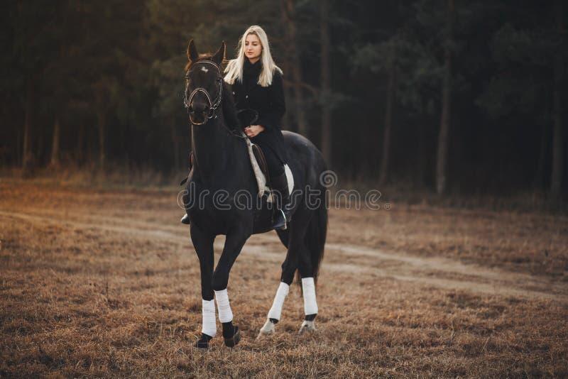 Menina com cavalo fotos de stock