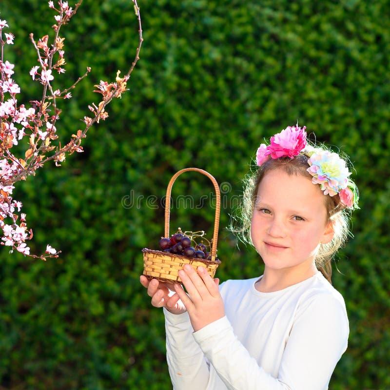 Menina com a cesta dos primeiros frutos da uva durante o feriado judaico, Shavuot em Israel fotografia de stock