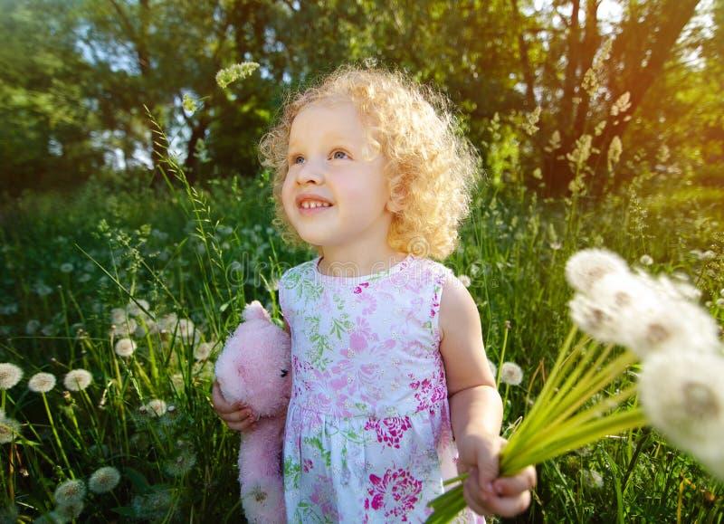 Menina com dentes-de-leão. imagem de stock