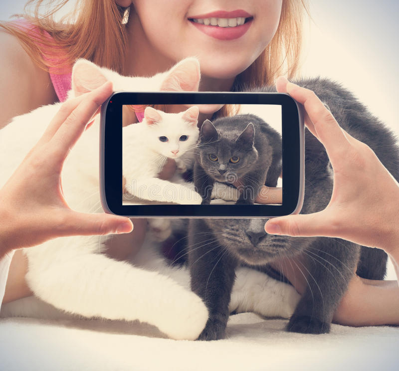 Menina com dois gatos fotos de stock royalty free