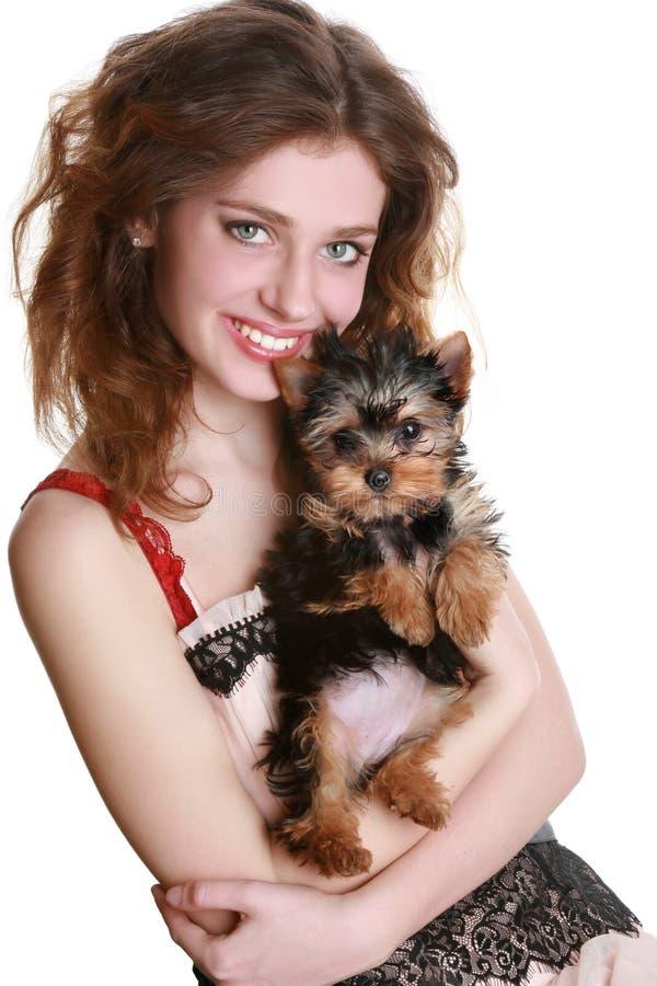 Menina com filhote de cachorro do yorkie fotos de stock royalty free
