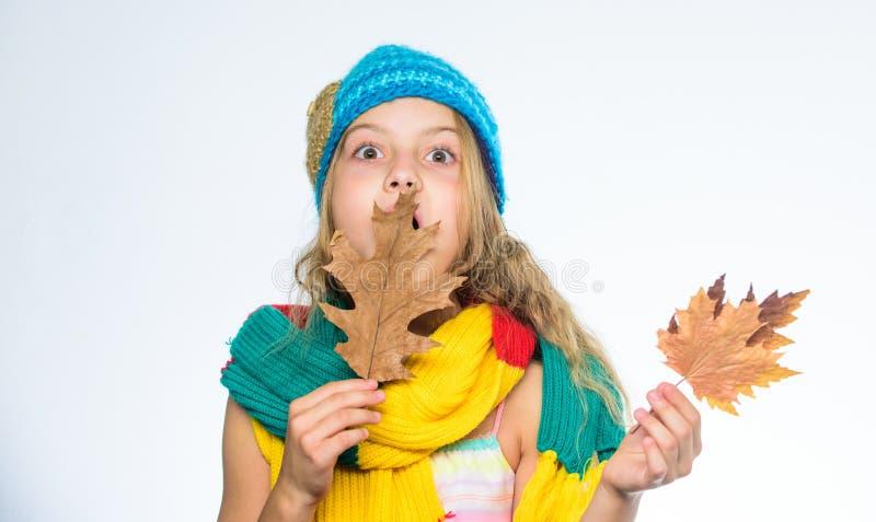 A menina com folha de bordo pensa sobre o lazer outono para fazer a lista da cubeta do outono da lista para crianças Desgaste bon imagens de stock