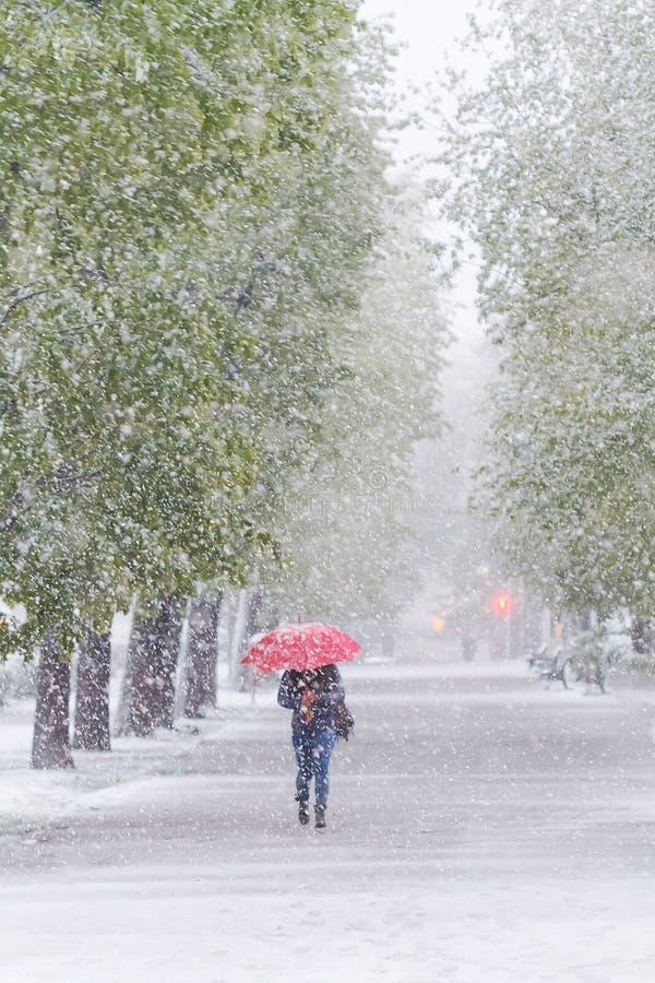 A menina com guarda-chuva vermelho que anda na neve ataca em abril fotografia de stock