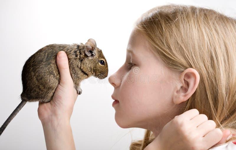 Menina com hamster imagem de stock