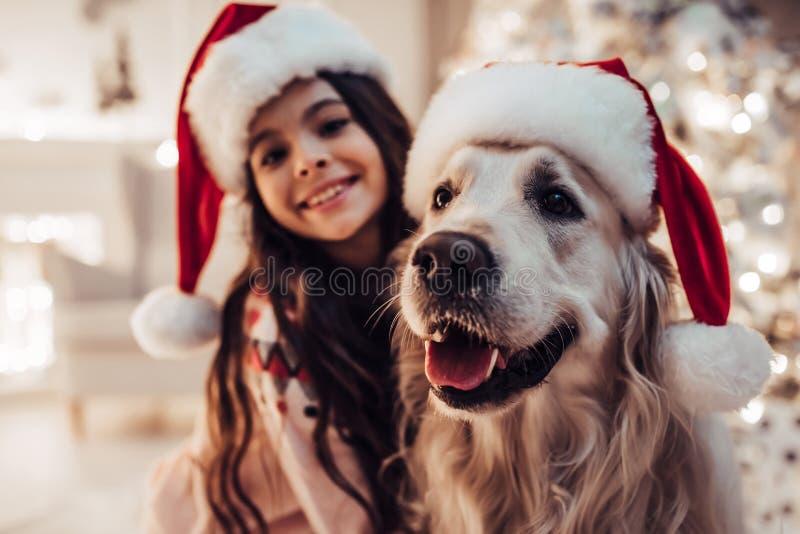 Menina com o cão na véspera do ` s do ano novo imagens de stock