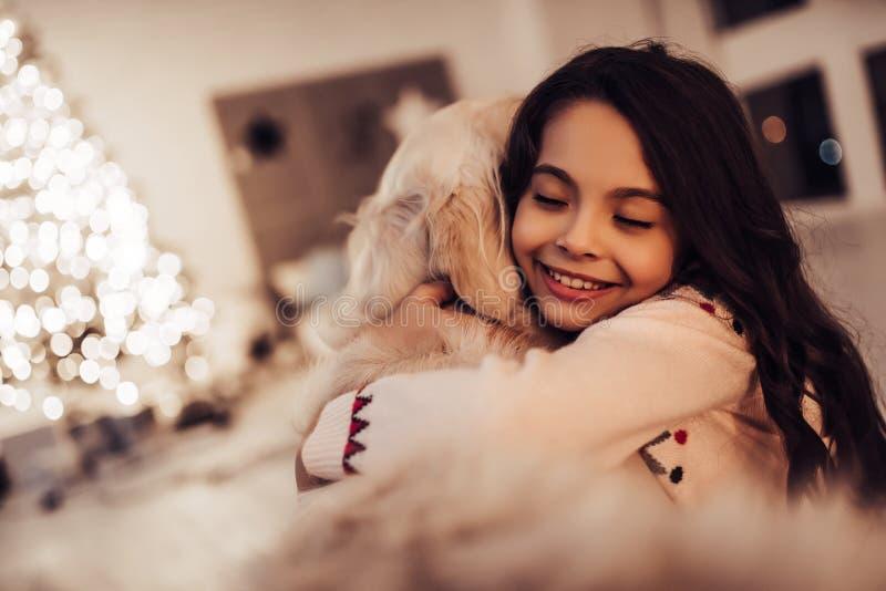 Menina com o cão na véspera do ` s do ano novo foto de stock royalty free