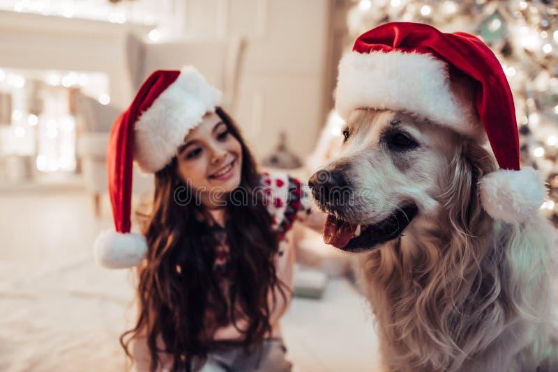 Menina com o cão na véspera do ` s do ano novo foto de stock