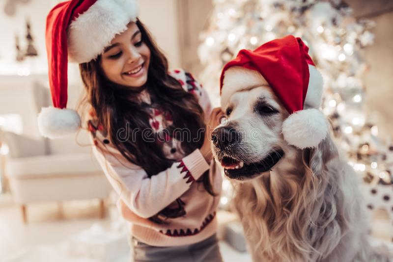 Menina com o cão na véspera do ` s do ano novo imagem de stock