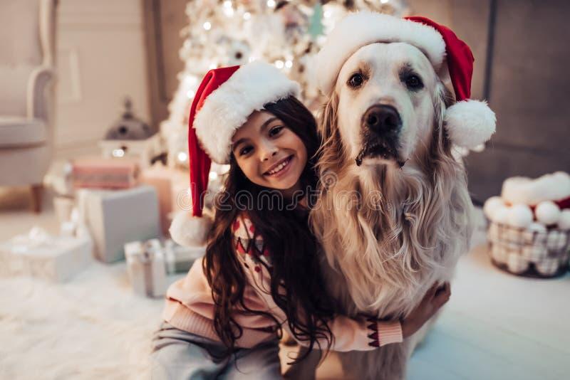 Menina com o cão na véspera do ` s do ano novo fotos de stock