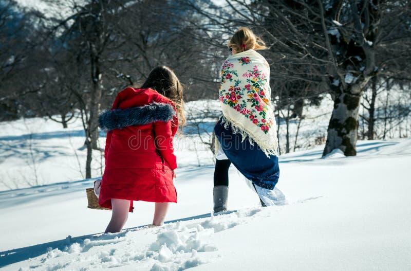 Menina com o mum que anda na neve fotografia de stock royalty free