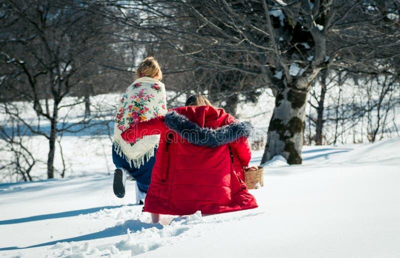 Menina com o mum que anda na neve foto de stock royalty free
