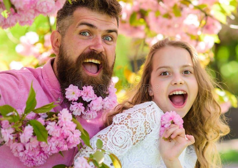 A menina com o paizinho perto de sakura floresce no dia de mola O pai e a filha nas caras felizes jogam com flores e abraços, sak fotografia de stock royalty free
