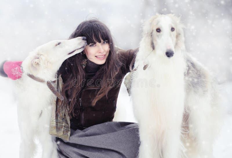 Menina com os dois galgos no inverno fotos de stock royalty free