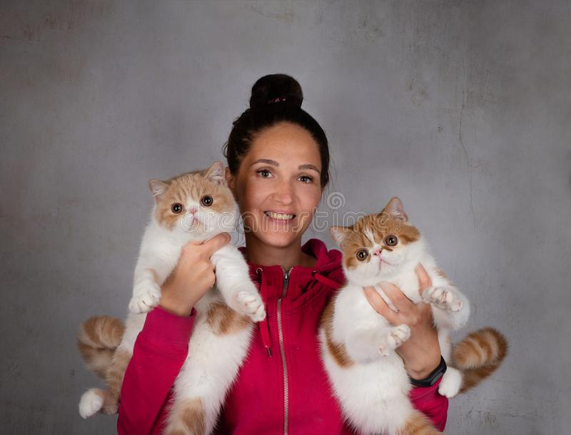 Menina com os dois gatos macios imagens de stock royalty free