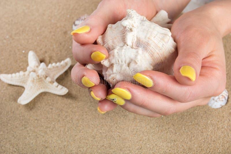 A menina com os pregos amarelos que guardam o mar grande descasca à disposição e estrela do mar na areia da praia no fundo imagem de stock
