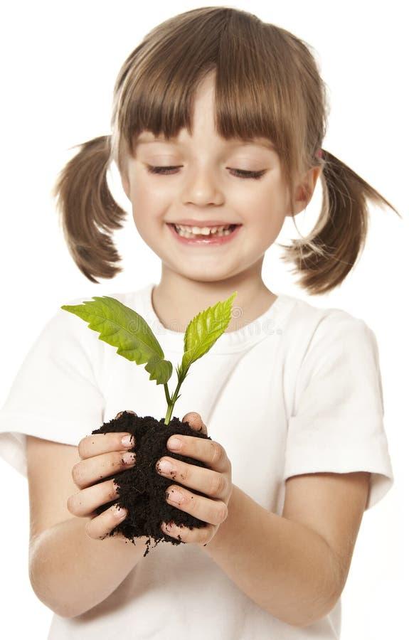 Menina com a planta em suas mãos fotografia de stock