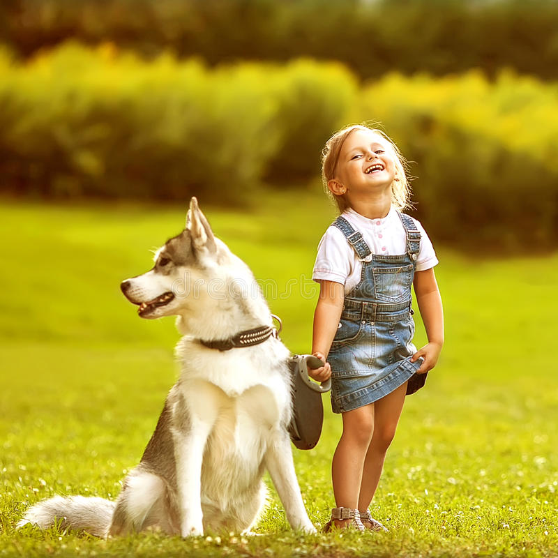 Menina com um cão de puxar trenós do cão foto de stock