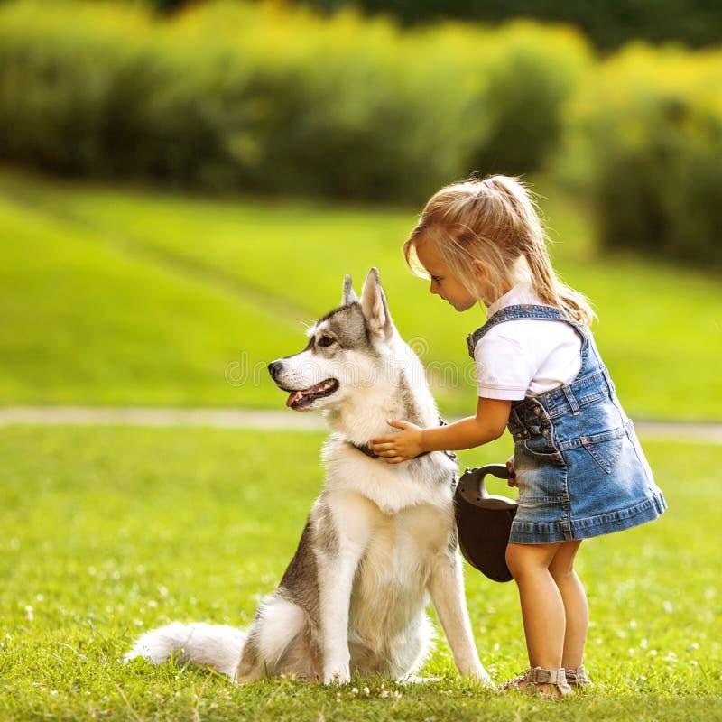Menina com um cão de puxar trenós do cão foto de stock royalty free