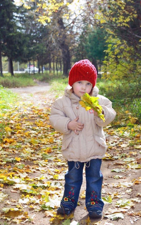 A menina confusa no parque do outono fotografia de stock