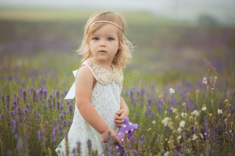 A menina consideravelmente bonito está vestindo o vestido branco em um campo da alfazema que mantém uma cesta completa de flores  foto de stock royalty free