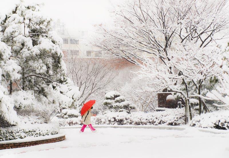Menina coreana que anda no dia nevado que guarda o guarda-chuva vermelho fotos de stock
