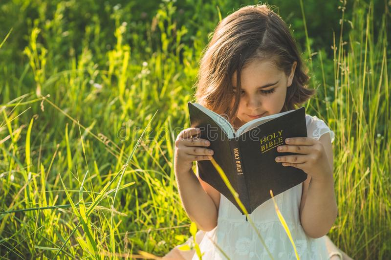 A menina cristã guarda a Bíblia em suas mãos Lendo a Bíblia Sagrada em um campo durante o por do sol bonito Conceito para a fé imagem de stock royalty free